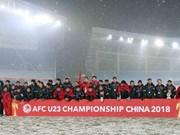 Journée du sport du Vietnam : des talents du sport vietnamien