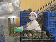 Ces entreprises qui maintiennent leur production face à la crise du coronavirus