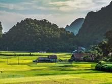 Beauté poétique du parc géologique de Cao Bang