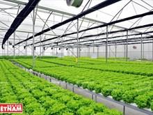 Delco Farm – Un modèle fermier intelligent