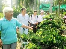 Promotion du tourisme agricole à Ho Chi Minh-Ville