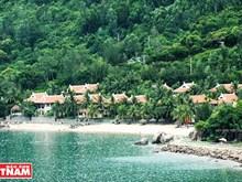La plage de Bai Rang, un petit paradis entre mer et forêt
