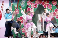 Echanges culturels Vietnam-Japon à Dak Lak