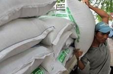 Cambodge : forte croissance des exportations de riz depuis janvier