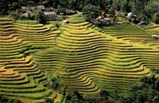Ouverture de la Semaine culturelle et touristique des rizières en terrasses de Hoàng Su Phi