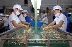 Vietnam et Inde stimulent leur coopération agricole
