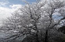 Il y aura peu de jours très froids cet hiver
