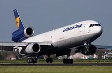Lufthansa Cargo va ouvrir une ligne de fret Francfort/Main-Hô Chi Minh-Ville