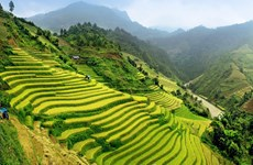 Le Vietnam, l'une des 20 premières destinations à visiter dans sa vie