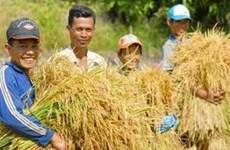 BAD : le taux de pauvreté du Vietnam est le plus bas d'Asie-Pacifique