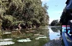 La zone humide de Lang Sen, 7e site Ramsar du Vietnam
