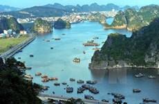 23 nouvelles grottes découvertes dans la Baie de Ha Long et de Bai Tu Long