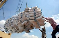 L'Indonésie veut importer un million de tonnes de riz vietnamien