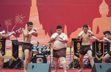 La Journée thaïlandaise 2015 à Hanoi