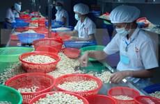 Vietnam-Canada : nette croissance du commerce bilatéral en neuf mois