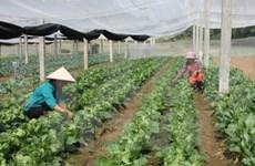 Agriculture : Nam Dinh et Miyazaki (Japon) renforcent leur coopération