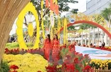 Hô Chi Minh-Ville : Festival des fleurs à l'occasion du Nouvel An lunaire