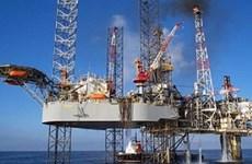 Le Vietnam se prépare pour une chute sans fin du prix de pétrole