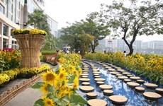Programme de la foire florale printanière de Phú My Hung 2016