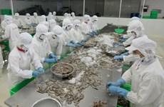 Rebond des exportations de crevettes aux Etats-Unis en 2016 ?