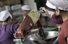 Le café instantané vietnamien s'affirme de plus en plus sur le marché mondial