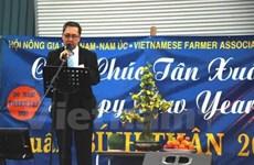 La communauté des Vietnamiens à l'étranger accueillent le Têt de l'Année du Singe
