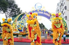 Diverses activités culturelles en l'honneur du Têt dans le pays