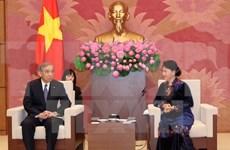 VIetnam-Japon : l'AN vietnamienne favorise la coopération décentralisée