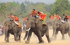 Bientôt la Fête des éléphants de Buôn Dôn 2016