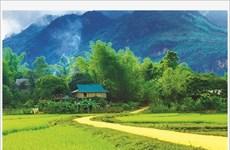 Immersion dans la culture Thai au village de Lac