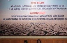 Le Vietnam fait appel à des aides internationales contre la sécheresse et la salinisation