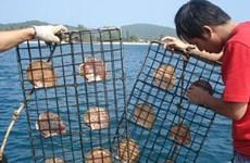 Le Bangladesh veut coopérer avec le Vietnam dans la perliculture