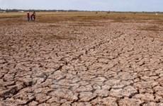MRC: la sécheresse et la salinisation perdurent dans le delta du Mékong
