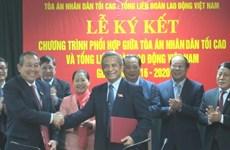 Coordination renforcée dans l'élaboration des lois liées au travail et à l'assurance sociale