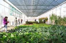 L'AFD assiste des projets non gouvernementaux au Vietnam