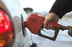 Autorisation de la participation étrangère à la distribution de carburants au Vietnam