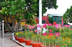 Un parc nommé d'après le général Vo Nguyen Giap à Truong Sa