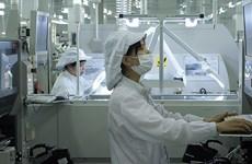 VEPR: Le Vietnam sera l'un des grands producteurs de la planète