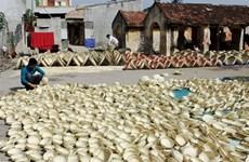 Thanh Hoa cherche à préserver ses villages de métiers