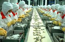 Développement d'une chaîne de valeur durable dans la production de crevettes
