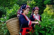 La Suisse au chevet des ethnies minoritaires