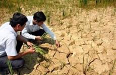 Assistance gouvernementale pour surmonter la sécheresse et la salinisation