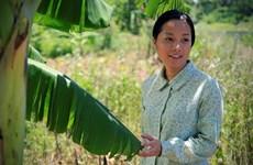 Le Vietnam au Festival des premières mondiales du cinéma des Philippines 2016