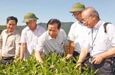 Les entreprises japonaises rencontrent les grands producteurs à Nghê An