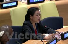 ONU : les droits de l'homme au centre de l'action mondiale