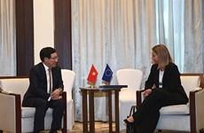 Le vice-PM Pham Binh Minh rencontre une haute représentante de l'UE