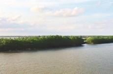 Thai Binh: l'îlot Côn Vành, un petit bout de nature sauvage