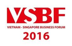 Forum d'affaires Vietnam-Singapour à Hô Chi Minh-Ville