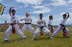 Le 6e festival international des arts martiaux traditionnels du Vietnam attendu en août
