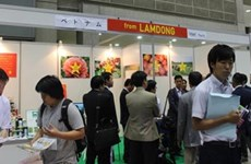 Lâm Dông renforce sa coopération agricole avec le Japon